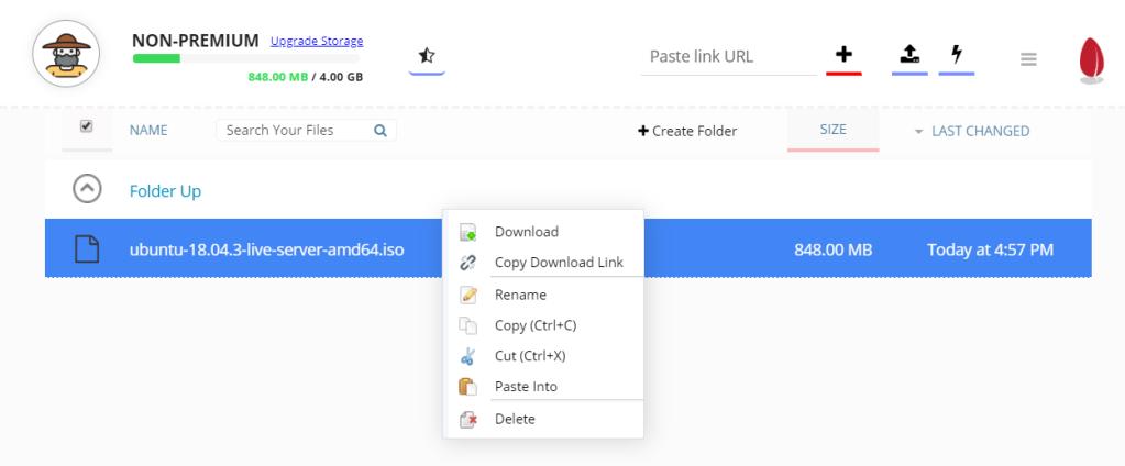 Seedr download options
